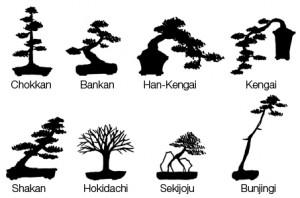 Bonsai-style
