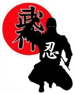 Ninjutsu-categorie-logo