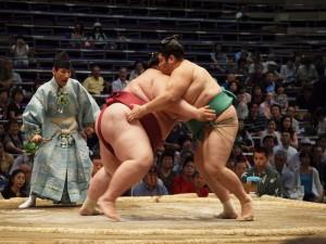 sumo_074