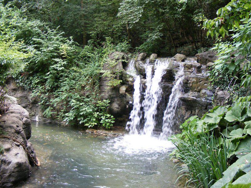 Symboles japonais asahi dojo international association for Cascade jardin japonais