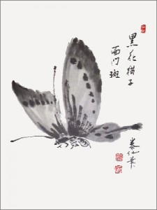 sum-sensei-papillon